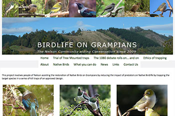 Birdlife on Grampians